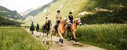 Riding, trekking & carriage tours